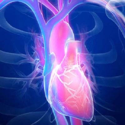 Cardiology 2022